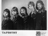 tapestry-promo